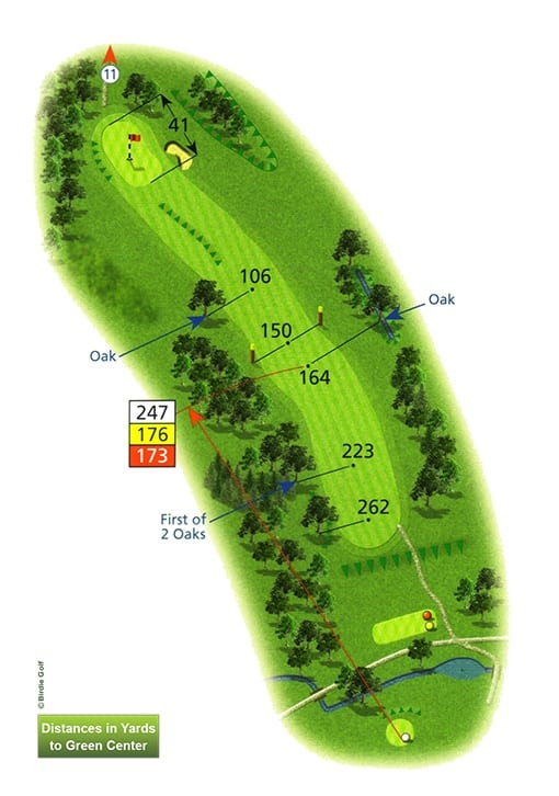 Course Planner Hole 10