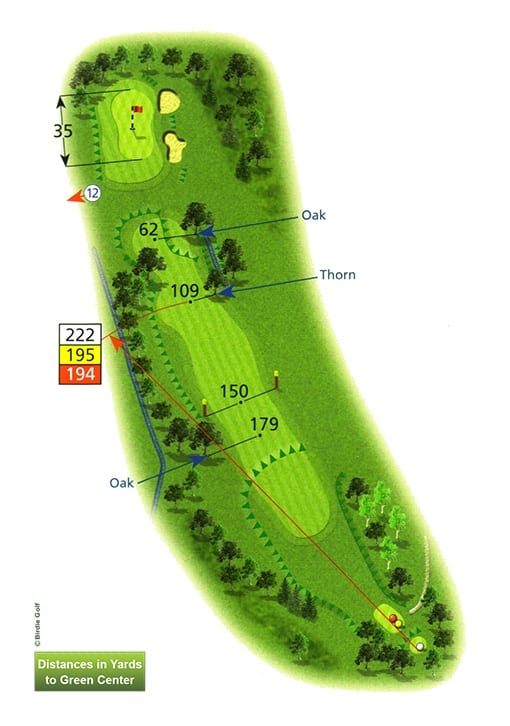 Course Planner Hole 11