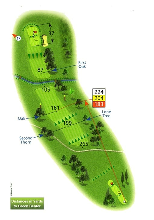 Course Planner Hole 16